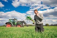 Preisprognosen in der Agrarwirtschaft