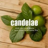 Candelae - die Duftkerzen aus der Weinflasche