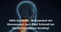 HWS-Syndrom - Wirksamkeit der Bioresonanz nach Paul Schmidt bei Nackenschmerzen bestätigt