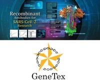 SARS-CoV-2-Forschung: GeneTex unterstützt die Wissenschaft