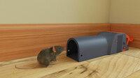 Mäuseplagen verhindern - Raus mit der Maus