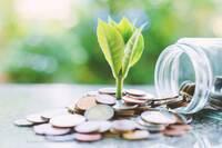 Nachhaltige Geldanlage: Verantwortungsvoll investieren