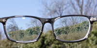 Makuladegeneration (AMD) - Augenarzt in Mainz zu Vitamin D