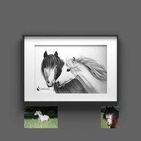 Tierportraits Sketchus - Online Kunstausstellungen
