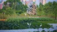 Dongguan / China: Malwettbewerb für junge Menschen