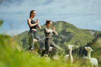 Yoga mit Alpakas im Aurelio Lech