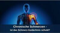 Chronische Schmerzen - ist das Schmerz-Gedächtnis schuld?
