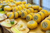 """""""Must eat"""": Diese 5 Slow Food-Spezialitäten sind typisch Texel"""