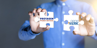 Protagen Protein Services Merges with GeneWerk to Integrate Leading Protein and Gene Therapy Analytic Platforms