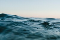 Weil das Meer mehr bietet   Die Welt der Meereskosmetik