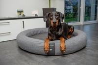 Exklusive Hundebetten - orthopädisch und elegant