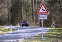 Geschwindigkeit anpassen und Wildunfall vermeiden