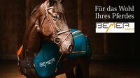 BEMER Magnetfeldtherapie für Pferde
