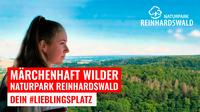 Urlaub im märchenhaft wilden Naturpark Reinhardswald - dein Lieblingsplatz