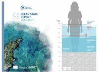 Meeresspiegel steigt weiter an - Copernicus Marine Service veröffentlicht neuen Ocean State Report