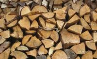 Ökobrennstoff Holz: Die erneuerbare Energie aus der Region