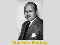 Der Mythos von Mustafa Shokay