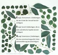 Nachhaltige Geldanlagen - grün, sozial und ethisch korrekt