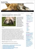Haustier-Blog: nützliche Tipps für Tierbesitzer