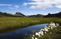 Island - Atemberaubende Natur und landschaftliche Vielfalt beim Reisen