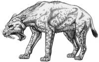 Exotische Tierwelt am Ur-Rhein vor zehn Millionen Jahren