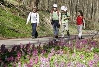 Montessori-Adressverzeichnis stellt Montessori-Einrichtungen vor