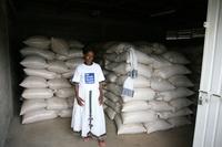 Ein Drittel der produzierten Lebensmittel landet auf dem Müll
