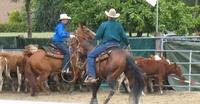 Rodeo & Westernturnier am 4./5. Juni 2011 auf der Cowboy