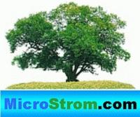 MicroStrom.com hat den günstigsten Stromtarif