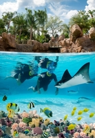 showimage DISCOVERY COVE, FLORIDA: THE GRAND REEF ERÖFFNET
