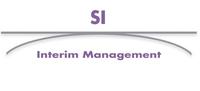 Internationales Interim Management II