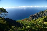 Traumreisen zu Traumpreisen: Kreuzfahrt nach Hawaii