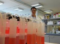 Das Klimagift als Wertstoff: Forscher binden C02 in verwertbaren Produkten
