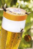Keine Chance für Wespen & Co.:  Mank DrinkSafe CAP schützt Getränke im Freien