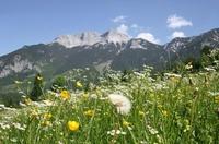 showimage Alpen und Wüste: Natur als Seminarraum