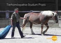 Neuer Studiengang Tierhomöopathie