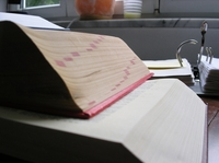 Früher habe ich beim Lernen immer nur unter Höchstdruck was geschafft, von Woilfried Busse München