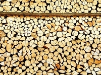 Ein Haufen Holz: Factoring für die Holzindustrie
