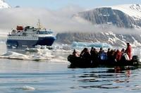 Von Spitzbergen in die Antarktis: Eine Bilder-Reise dem Zug der Küstenseeschwalbe folgend