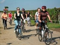Besonderes Gruppenevent 2012 – genüssliche  E-Bike Ausflüge  in der Pfalz