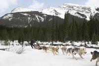 Winterdomizil: Kanada