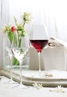 Gläser vom Gastronomie-Kaufhaus.de:   Ein Kuss für die Visitenkarte