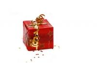 Weihnachtskredit 2011 - Kredit auch ohne Schufa