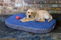 Moderne Hundekissen, Hundematten mit einer Liegefläche aus Noppenschaum