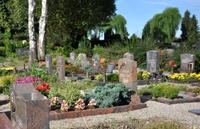 "Hohe Friedhofsgebühren fördern ""Bestattungstourismus"""