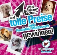 HUND-unterwegs.de startet Hundefoto-Wettbewerb