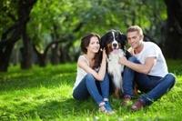 Mit der Uelzener Hundehaftpflicht im Schadensfall auf Nummer Sicher gehen