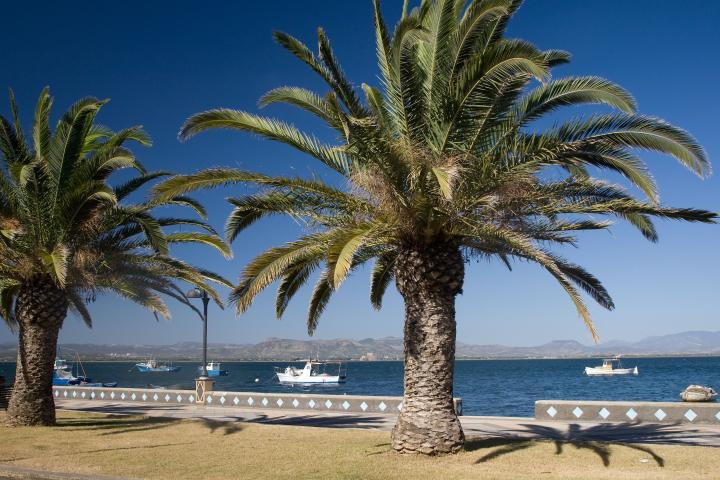 Segeln auf Sardinien: Neue Charterflotte in der Karibik des Mittelmeeres