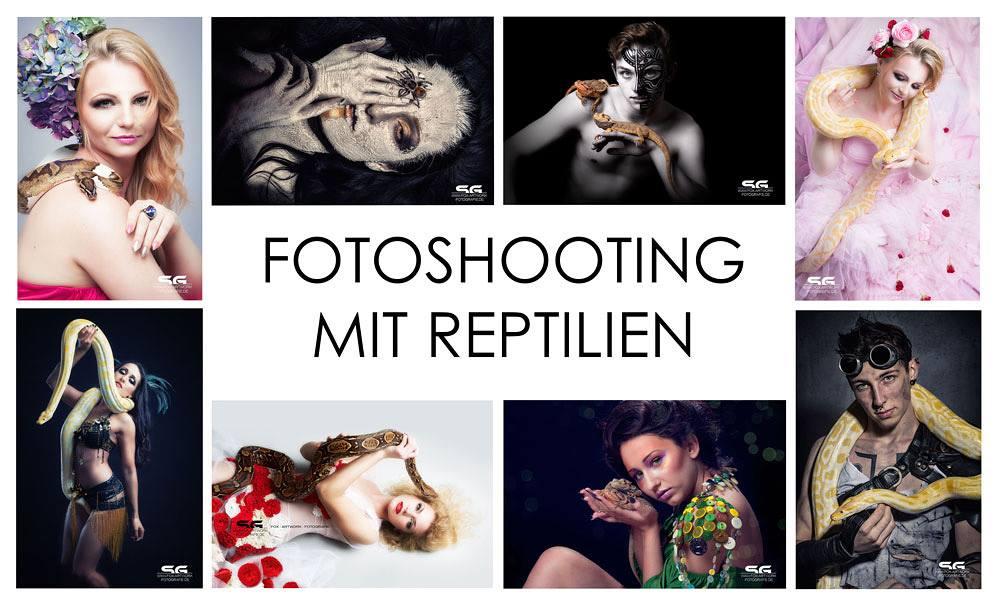 Fotoshootings mit Schlangen und Vogelspinnen in Hamm
