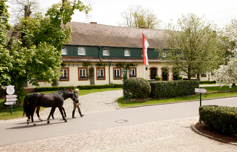 Den Frühling im Saarland entdecken – Mit einer Auszeit im Romantik Hotel Linslerhof